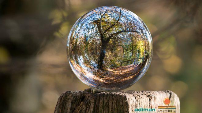 Feliz Día Mundial del Medio Ambiente.