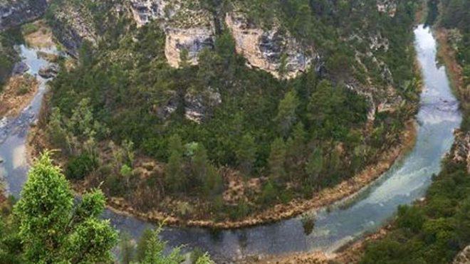 Castilla-La Mancha va a modificar su Ley de Gestión Forestal Sostenible para adecuarla a las políticas contra la despoblación