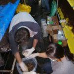 Nativa realiza importantes avances en el proyecto de seguridad alimentaria en el que colabora Adiman