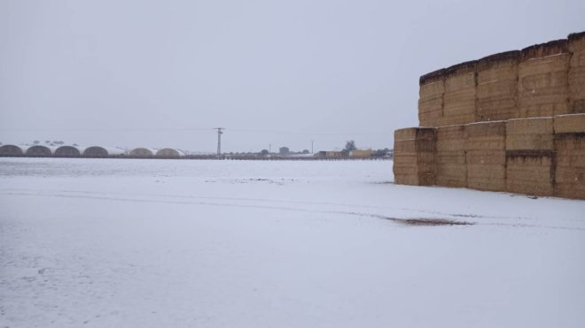 Intensas nieves en la Manchuela conquense