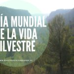 Día Mundial de la Vida Silvestre