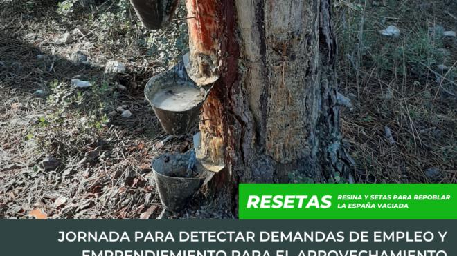 'Resetas' organiza una jornada para identificar demandas de empleo para el aprovechamiento sostenible de los recursos naturales del monte
