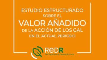 REDR publica el 'Estudio estructurado sobre el Valor Añadido de la acción de los GAL en el actual período'.