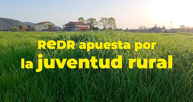 REDR lanza su primer boletín informativo 'Redr Jóvenes'